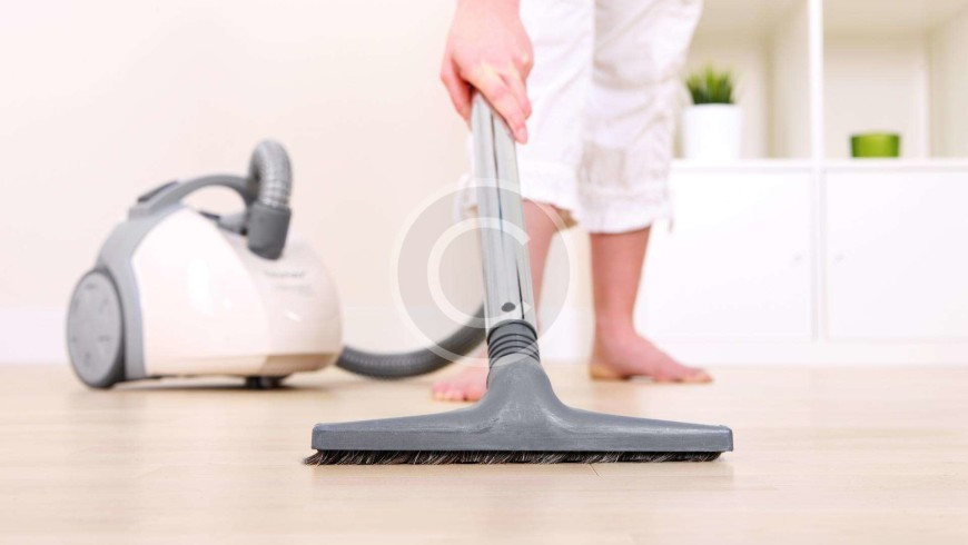 The Professional Cleaning